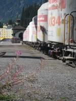 kritik-erwuenscht/29549/zementwagen-und-pflanzen-in-arosa-was Zementwagen und Pflanzen in Arosa. Was meint Ihr dazu? Kritik, Bearbeitungsvorschläge (Foto ist unbearbeitet)?